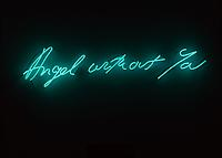 Tracey Emin Angel Without You Museum of Contemporary Art, North Miami exhibition