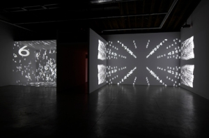 Charles Atlas: The Illusion of Democracy Luhring Augustine Bushwick February - July 2012