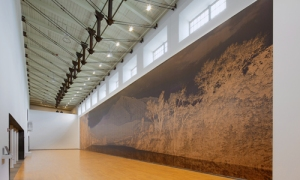 Clifford Ross MASS MoCA Clifford Ross: Landscape Seen and Imagined Sopris Wall I, 2015 Cured ink on wood 24 x 114 feet Courtesy of Clifford Ross Studio Photo: Arthur Evans