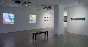 Jacco Olivier Installation View January 10 - February 14, 2016 HD Animation Boesky East: 20 Clinton treet