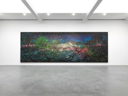 "GAGOSIAN GALLERY LONDON BRITANNIA STREET November 2012 - January 2013 ""ZENG FANZHI"" Installation view Photo by Mike Bruce"